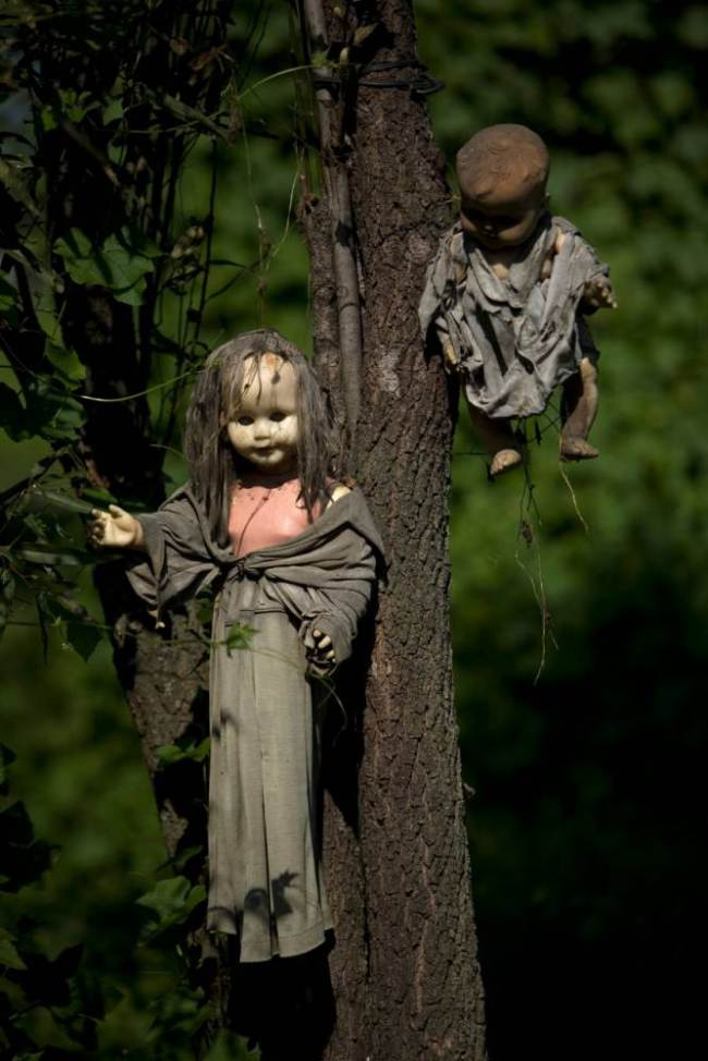 alamy-picture-dead-dolls1